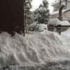 大雪になった