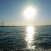 暑い夏の日 好きな人達と共有してきた時間について想う 笑顔を与えてくれた素晴らしき日々 感謝のマルイカ釣り