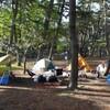 春キャンプ 大洗キャンプ場