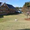 ブレンデイくん、はじめてのお泊り犬宿旅行イン北志賀高原