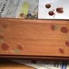 たんぽぽ表札を描く2