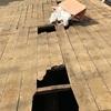 築100年の建物の屋根は危険がいっぱいです。