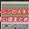 【マイクラ】ニンジンの入手方法と使い道などまとめ!
