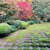 京都さんぽ・東福寺で紅葉と東西南北4つの顔をもつ「八相の庭」を楽しむ
