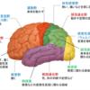 脳卒中を診る時に忘れてはならないメカニズム