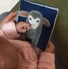赤ちゃんにオススメの布絵本