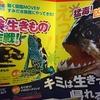 危険な生きもの大作戦!を見にすみだ水族館へ行って見た。(墨田区押上)
