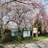 """東山湖 """"春"""" 今年も4月2週目の大爆釣を体験しに…"""