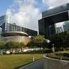 新型コロナウイルス:香港政府庁舎では会議会議、その前の公園ではヨガや筋トレ、ピクニックというのが最近の香港の過ごし方(COVID-19)