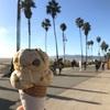 【ロサンゼルスの外せないビーチスポット】サンタモニカとベニスビーチ