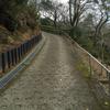 新歴史公園-108-長野公園    2015/3/8