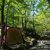 早朝の川沿いの空気が綺麗、山伏オートキャンプ場に行ってみた。二日目、景色も綺麗。(山梨県南都留郡道志村長又)