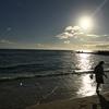 ハワイが好きになって、20年経ってた💦 ハワイ愛がいつまでも色あせないその理由が単純すぎて、自分でもびっくり。
