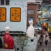 猫好きにはたまらない!厦門(アモイ)の穴場スポット「猫博物館」エリア(=^ェ^=)