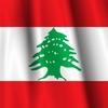 レバノンの大爆発ってどのくらいすごかったの? ゴーンさんは?