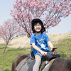 馬に乗りながらお花見できる!小貝川ポニー牧場に行ってきた。