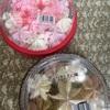 フタバ食品:ビターチョコモナカ/ストロベリーホワイトチョコモナカ/香るCafé/りんごの季節ふじ&王林/サンフォルテ(いちご・チョコ)