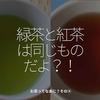 1005食目「緑茶と紅茶は同じものだよ!?」お茶ってなあに?その④