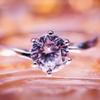 ダイヤモンドはダイヤモンドでしか磨かれない、そして人も・・・。