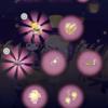 【今日のハロスイ】新作ハッピーバッグ「中秋の月宴」初日7連ガチャ結果報告