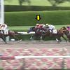レッドエランドール 未勝利戦で2着(おまけ・東サラ2020年度募集馬発表)