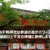 【下鴨神社@京都】縁結びと干支の神様に参拝できる参道の森がパワースポットの雰囲気ばつぐんの神社