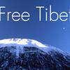 tibetronica.com