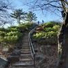 山手線内で1番高い、箱根山(その1)