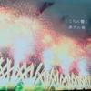 東京から「長岡花火」を初めて見に行ったリアルな感想と口コミ。意外と大変だった話