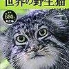 300冊スタート(7)
