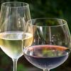 イタリア人のワインの飲み方?@Twitter