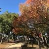 子供の森公園。岡山市お出かけスポット、子供の遊び場。
