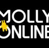 モーリーオンラインの詳細、評判、操作方法、登録方法まとめ!実際にやってみた!