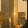 【写真】東京ミッドタウン日比谷