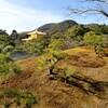【京都】【御朱印】『金閣寺(鹿苑寺)』に行ってきました。 京都旅行 京都観光 女子旅 主婦ブログ