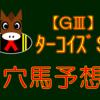 【GⅢ】ターコイズS ◎アンドラステ的中‼
