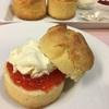 麻布十番でおすすめのパン屋さん『ポワンタージュ』のスコーンと甘いパンは我が家のおやつ。