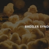 BROILER SYNDROME