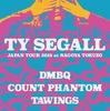 Ty Segall のライブのおもいで