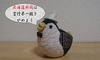 高度プロフェッショナル制度:北海道新聞は言行不一致をやめよう