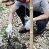自然と人との営みを知る。第70回全国植樹祭。