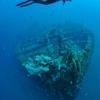 沈船 モラスシップレックの謎