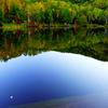 秋の志賀高原、渋峠!カメラ始めて6カ月の僕が撮った写真。