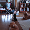 Arca dog 運動会2012 <プロローグ>