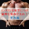 【筋トレバルクアップ】インスリンを味方につけ、筋肉だけで増量せよ!②~実践編~