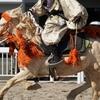 川崎競馬場での木曽馬演舞