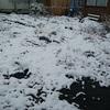 初雪ですよね・・・
