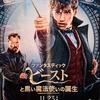 『ファンタスティック・ビーストと黒い魔法使いの誕生』字幕版