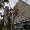 楽しい街道歩き(東海道を歩く(その1))