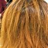 乾燥した髪!